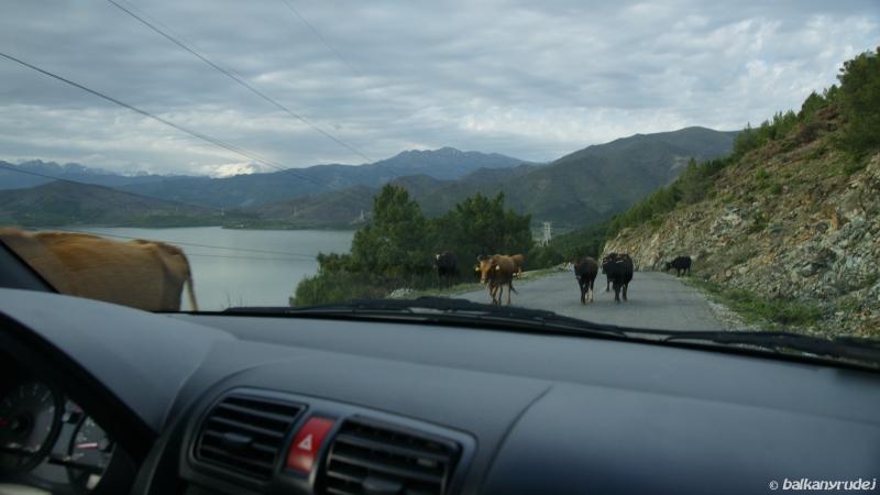 na drodze do Komanu