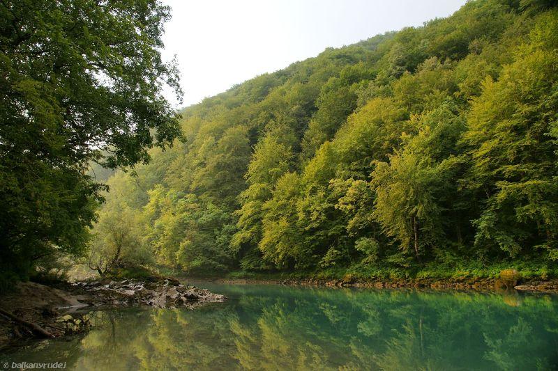 Dolina Driny